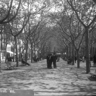Vista parcial del passeig de Miquel Blay, aleshores Firal, a Olot.