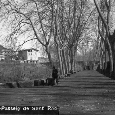 Vista general del passeig de Sant Roc, a Olot.