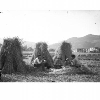 Exposició Carme Gotarde. Paisatges, Arxiu Comarcal de la Garrotxa, (c) Carme Gotarde