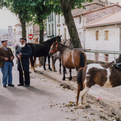 Mercat de bestiar gros al Puig del Roser. ACGAX. Servei d'Imatges. Fons Ajuntament d'Olot. Autor: Jesús Coma Rico, 1992.