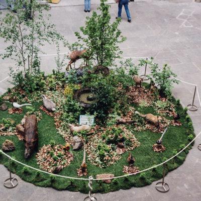 Simulació d'un bosc amb animals autòctons dissecats, al voltant de la font del pati de l'Hospici. ACGAX. Servei d'Imatges. Fons Jaume Tané Cufí. Autor desconegut, 1997.