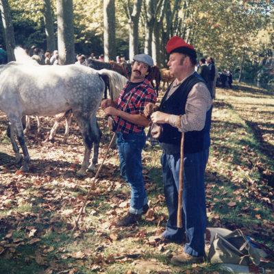 Mostra de bestiar gros al passeig de Sant Roc. ACGAX. Servei d'Imatges. Fons Jaume Tané Cufí. Autor desconegut, c.1985.