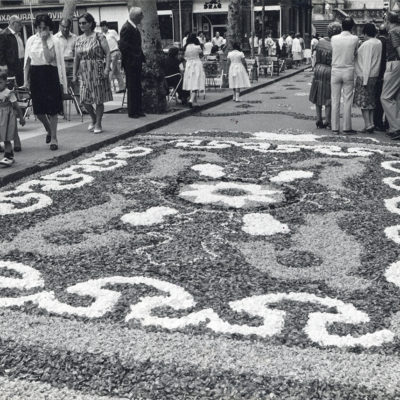 Vista general d'una catifa de flors durant dia de Corpus, al passeig de Miquel Blay, o Firal. ACGAX. Servei d'Imatges. Fons L'Olotí. Autor desconegut, 1983-1984.