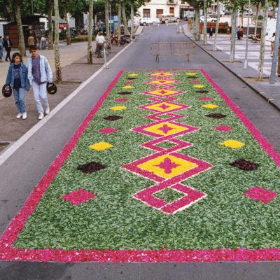 Vista general d'una catifa de flors durant dia de Corpus, al passeig de Miquel Blay, o Firal. ACGAX. Servei d'Imatges. Fons Ajuntament d'Olot. Autor desconegut, 1993.