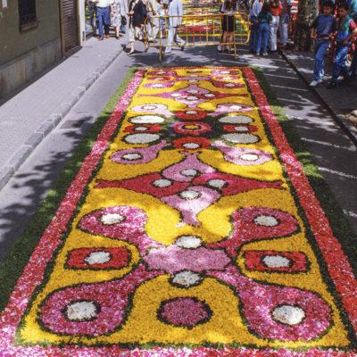 Vista general d'unes catifes de flors durant el dia de Corpus, al passeig de Miquel Blay, o Firal. ACGAX. Servei d'Imatges. Fons Ajuntament d'Olot. Autor desconegut, 1993.