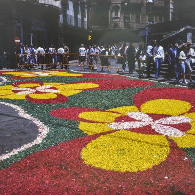 Vista parcial d'una catifa de flors durant dia de Corpus, a la plaça d'Esteve Ferrer. ACGAX. Servei d'Imatges. Fons Josep M. Melció Pujol. Autor: Josep M. Melció Pujol, c.1985.