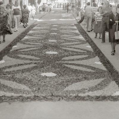 Vista parcial d'unes catifes de flors durant el dia de Corpus, al passeig de Miquel Blay, o Firal. ACGAX. Servei d'Imatges. Col·lecció L'Abans. Cessió de Pep Roura Bendicho. Autor: Pep Roura Bendicho, 1981.